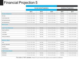 Financial Projection 5 Presentation Visuals