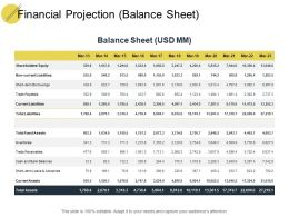 Financial Projection Balance Sheet Ppt Powerpoint Presentation Pictures Templates