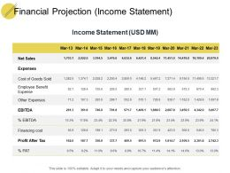 Financial Projection Income Statement Ppt Powerpoint Presentation Themes