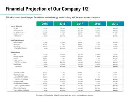Financial Projection Of Our Company 2015 To 2019 Ppt Powerpoint Presentation Gallery Example