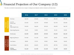 Financial Projection Of Our Company Flow Ppt File Elements