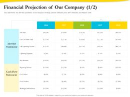 Financial Projection Of Our Company Income Ppt Infographics