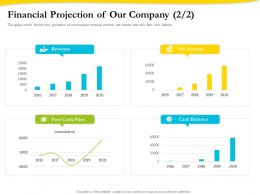 Financial Projection Of Our Company Revenue Ppt Gallery Styles