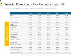 Financial Projection Of Our Company Sheet Ppt Infographics