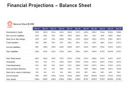 Financial Projections Balance Sheet Investigation For Investment Ppt Powerpoint Styles Display
