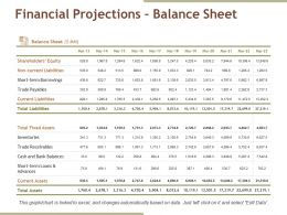 Financial Projections Balance Sheet Ppt Examples Professional