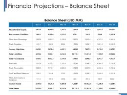 Financial Projections Balance Sheet Ppt Inspiration Graphic Images