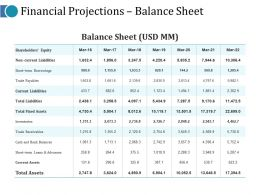 Financial Projections Balance Sheet Ppt Pictures Guidelines