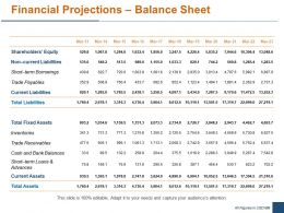 Financial Projections Balance Sheet Ppt Powerpoint Presentation File Graphics