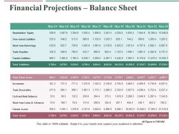 Financial Projections Balance Sheet Ppt Professional Example Topics