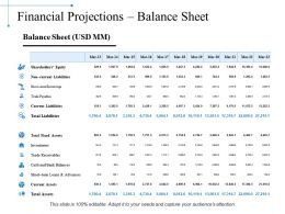 Financial Projections Balance Sheet Ppt Summary