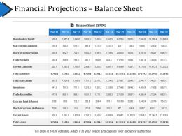 Financial Projections Balance Sheet Presentation Portfolio