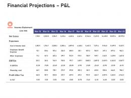 Financial Projections P And L Investigation For Investment Ppt Powerpoint Presentation Show