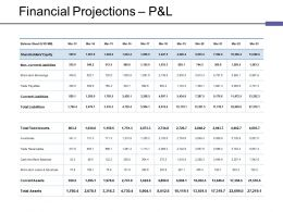 Financial Projections P And L Ppt Files