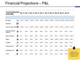 Financial Projections P And L Ppt Pictures