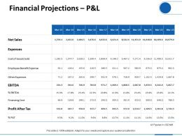 Financial Projections P And L Ppt Professional Graphics Download