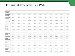 Financial Projections P And L Ppt Styles Summary