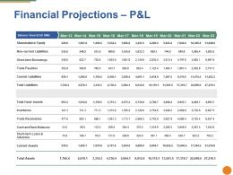 Financial Projections Ppt Pictures Gridlines