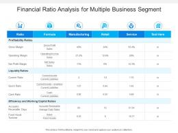 Financial Ratio Analysis For Multiple Business Segment