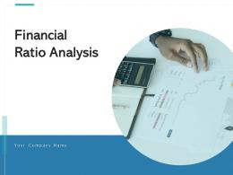Financial Ratio Analysis Inventory Accounts Receivables Shareholders Equity Interest