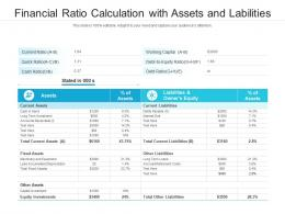 Financial Ratio Calculation With Assets And Labilities