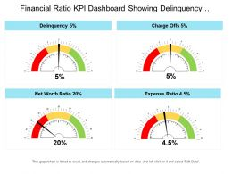 Financial Ratio Kpi Dashboard Showing Delinquency Charge Offs And Net Worth Ratio