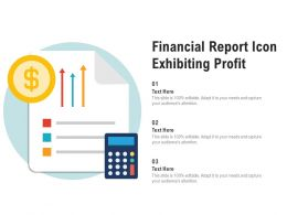Financial Report Icon Exhibiting Profit