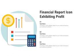 Financial Report Icon Exhibiting Profit