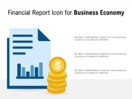 Financial Report Icon For Business Economy
