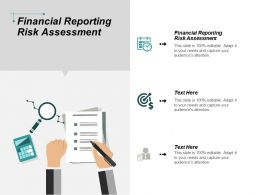 Financial Reporting Risk Assessment Ppt Powerpoint Presentation Portfolio Brochure Cpb