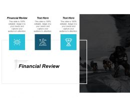 Financial Review Ppt Powerpoint Presentation Portfolio Sample Cpb