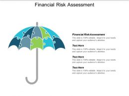 Financial Risk Assessment Ppt Powerpoint Presentation Icon Portfolio Cpb