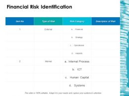 Financial Risk Identification Ppt Layouts Example File