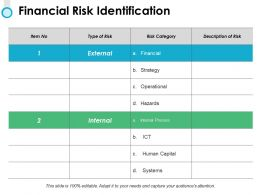 Financial Risk Identification Ppt Powerpoint Presentation File Microsoft
