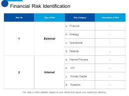 Financial Risk Identification Ppt Styles Design Inspiration