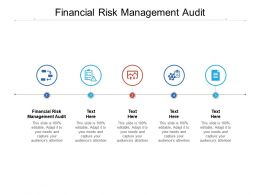 Financial Risk Management Audit Ppt Powerpoint Presentation Gallery Designs Cpb