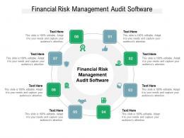 Financial Risk Management Audit Software Ppt Powerpoint Presentation Model Templates Cpb