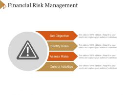Financial Risk Management Powerpoint Themes