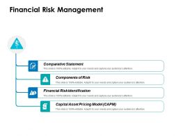 Financial Risk Management Ppt Layouts Files