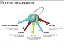Financial Risk Management Ppt Powerpoint Presentation Diagram Graph Charts Cpb