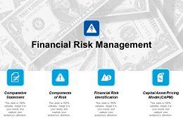 Financial Risk Management Ppt Styles Design Inspiration