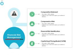 Financial Risk Management Risk Identification Ppt Powerpoint Presentation Icon