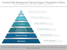Financial Risk Management Sample Diagram Presentation Outline