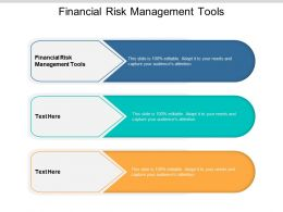 Financial Risk Management Tools Ppt Powerpoint Presentation Slides Structure Cpb