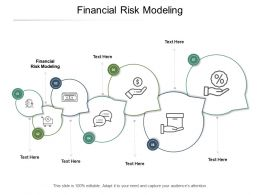 Financial Risk Modeling Ppt Powerpoint Presentation Infographics Display Cpb
