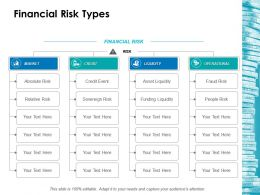 Financial Risk Types Ppt Layouts Gallery
