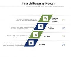 Financial Roadmap Process Ppt Powerpoint Presentation Styles Templates Cpb