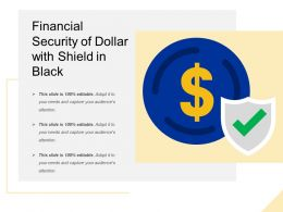 Financial Security Of Dollar With Shield In Black