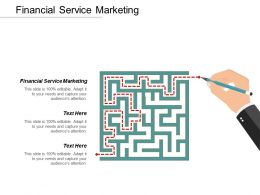 Financial Service Marketing Ppt Powerpoint Presentation Outline Structure Cpb