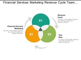 Financial Services Marketing Revenue Cycle Team Project Management Cpb